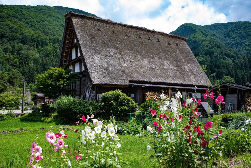 Lush green forest and beautiful flowers adorn the traditional city of Shirakawago.