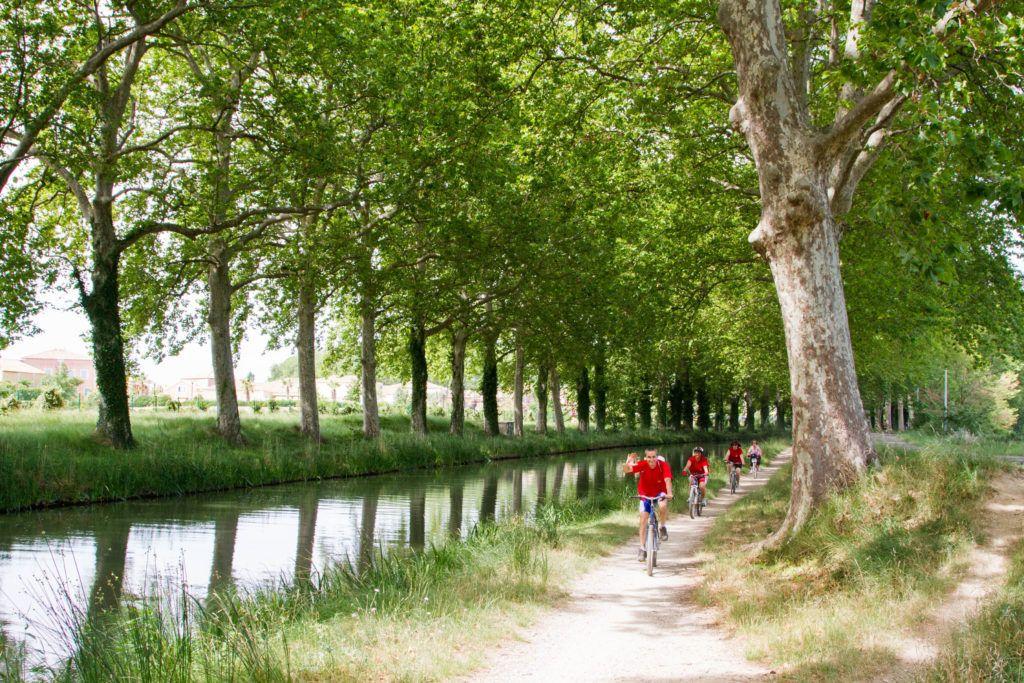 Bicyclists enjoying a ride along the Canal du Midi.