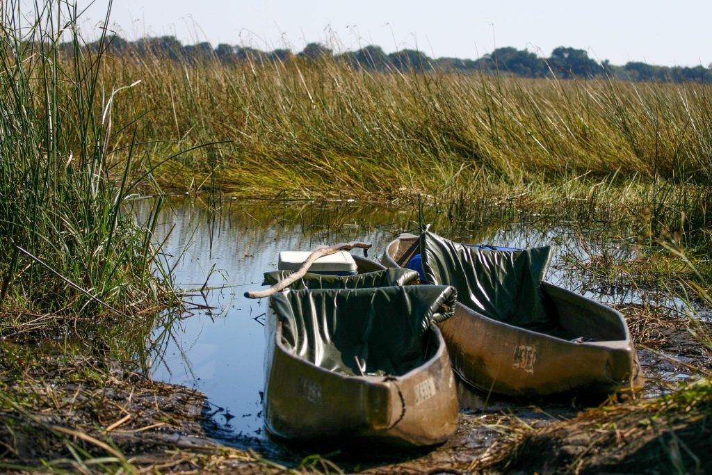 The guides have added padded seating to the dugout-like boats, and we're ready for a Mokoro Okavango safari.