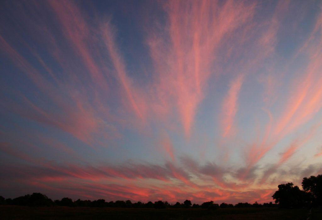 Sunset in Seronga Bostwana with beautiful pink streaks fanned out across the sky.